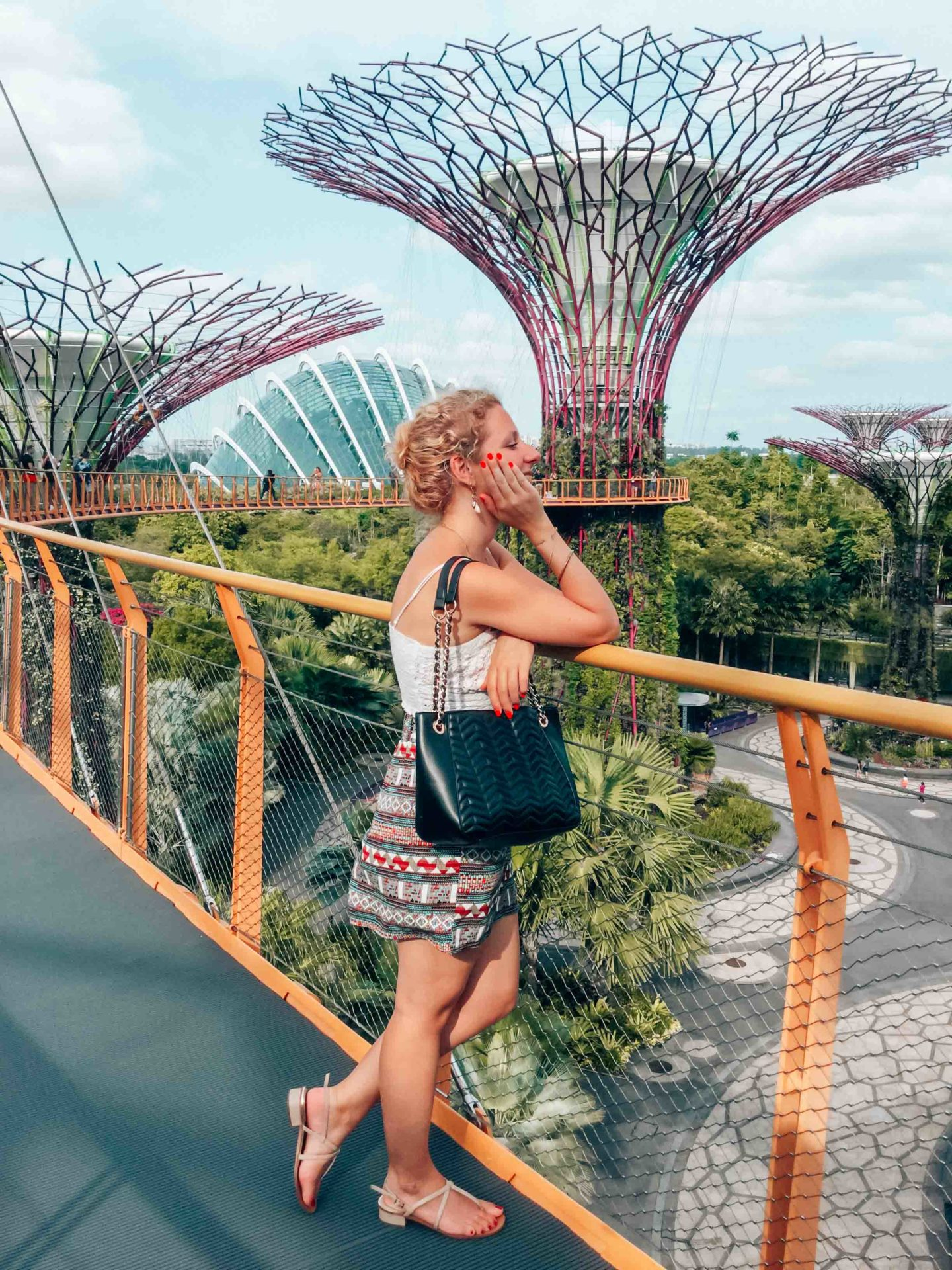 View on the Gardens by the Bay from the OCBC skyway