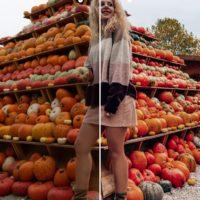 Pumpkin spice preset fall pack