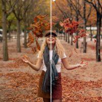 Throwing leaves preset fall pack