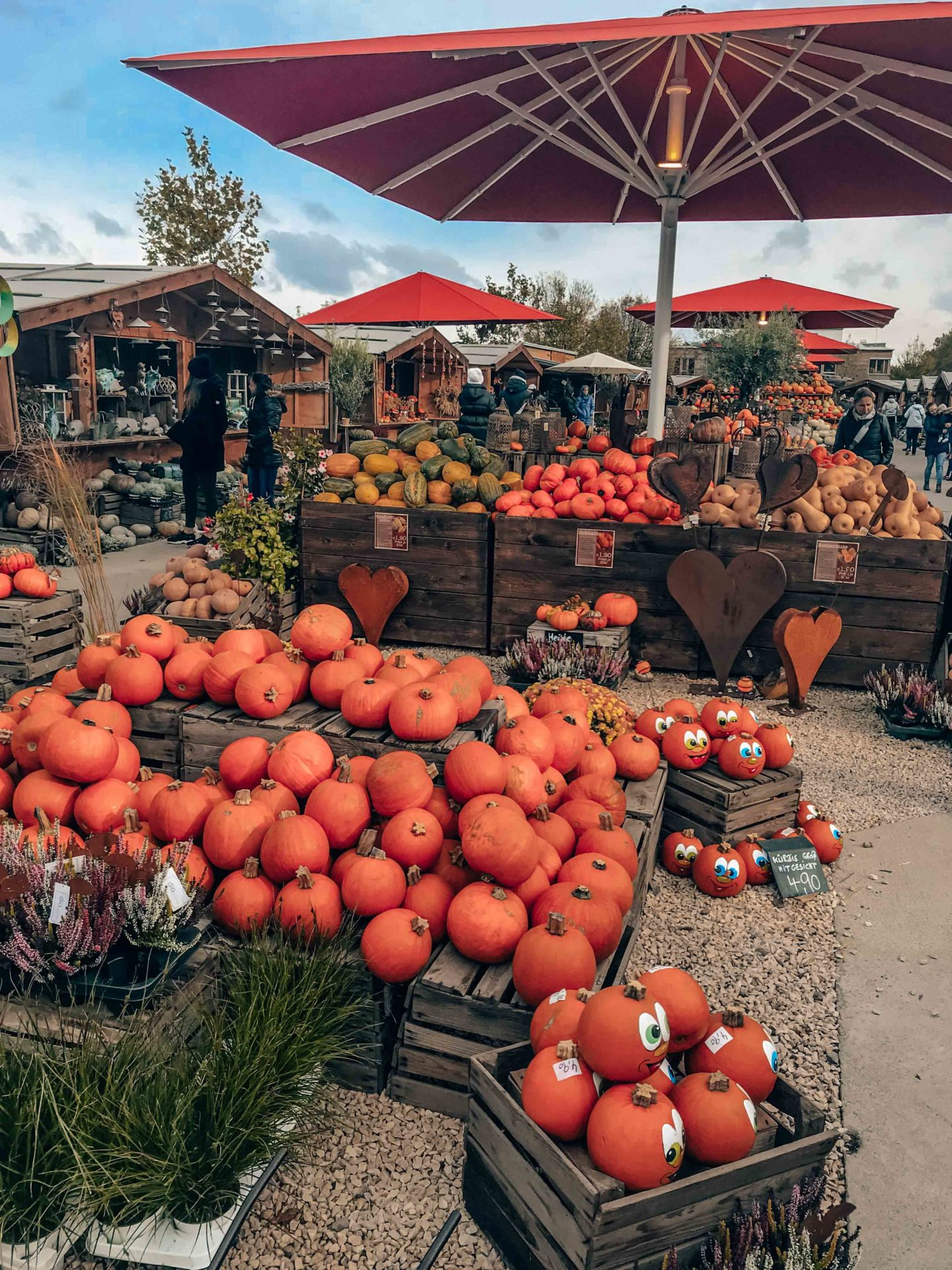 Pumpkin market near Cologne