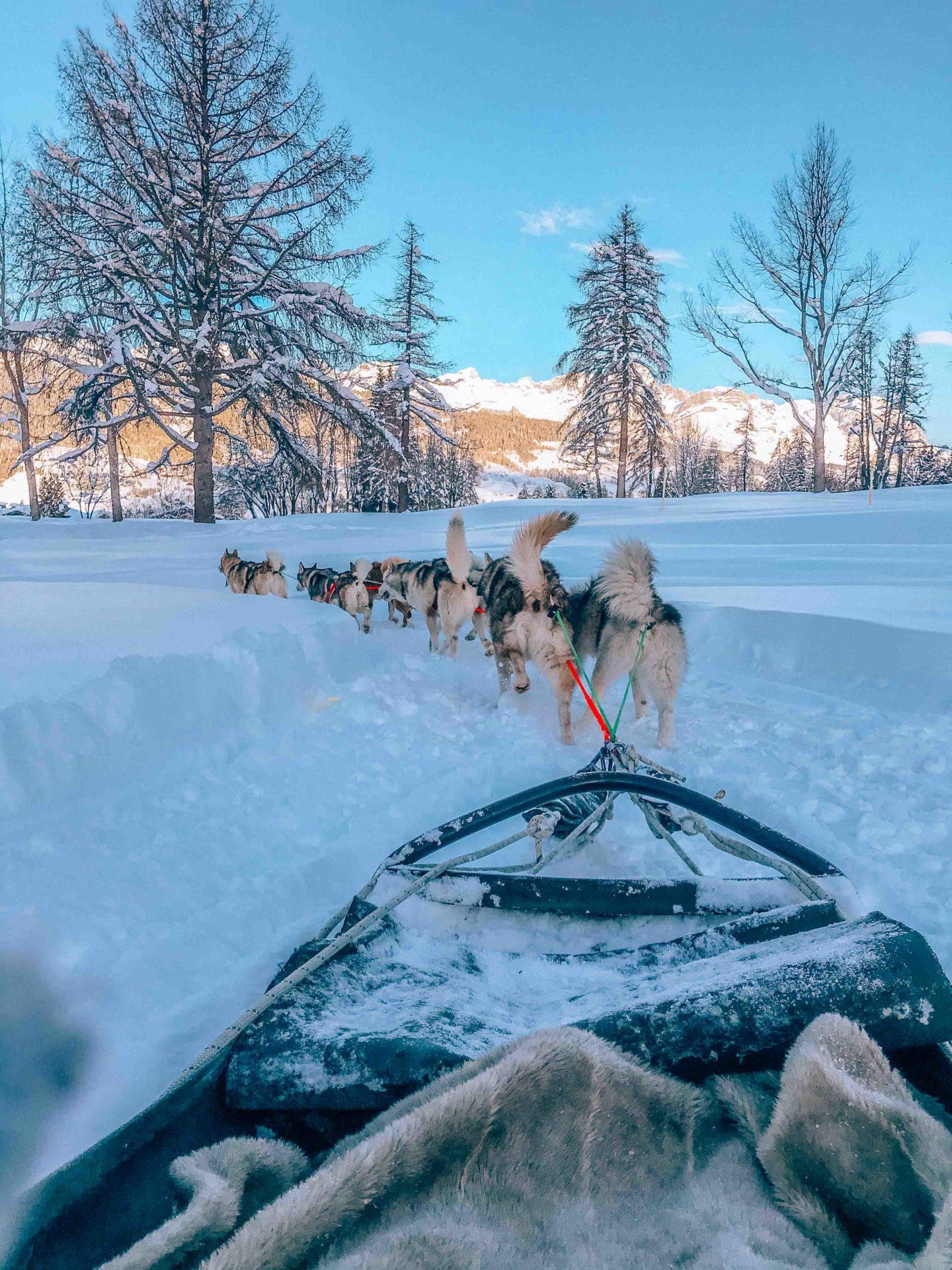 Dog sledding in Megeve
