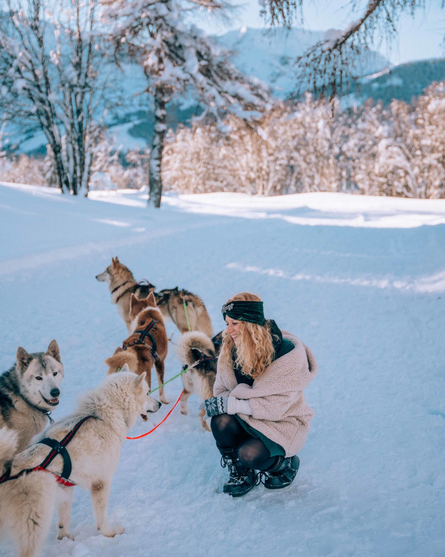Dog sledding path in Megeve, French Alps