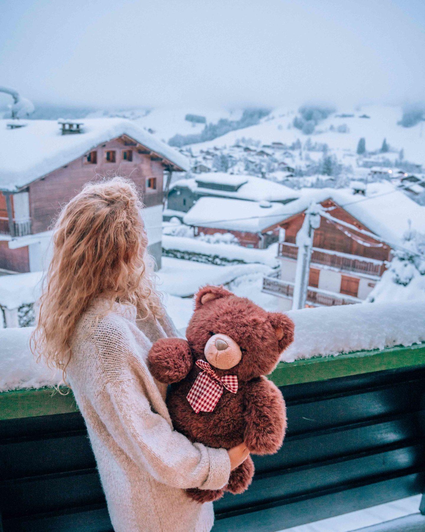 Teddy bear and mountain views