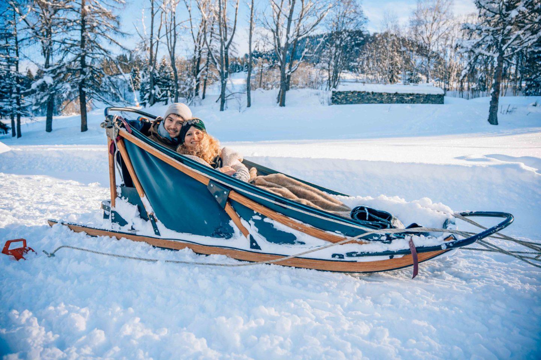 Couple dog sledding experience in Megeve